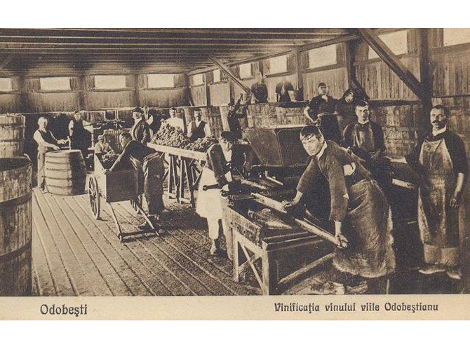 Crama Odobsteanu