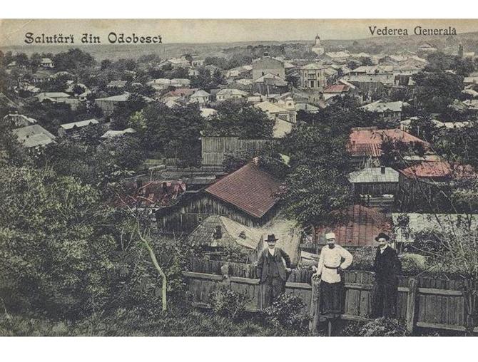 Orasul vazut din Dealul Odobestilor